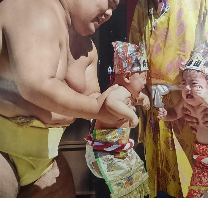 Наки сумо - сумо плачущих младенцев. Сумо, Жиробасинка, Дети, Япония, Плач, Хороший тамада, Длиннопост