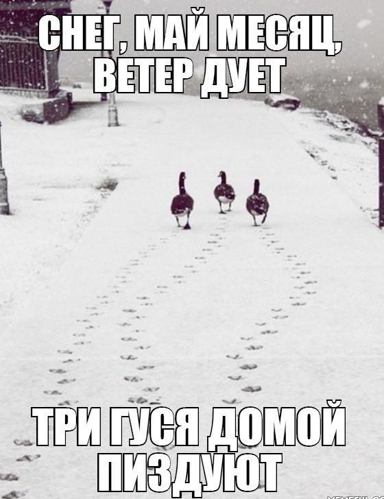 Весна в Сибири..она такая..