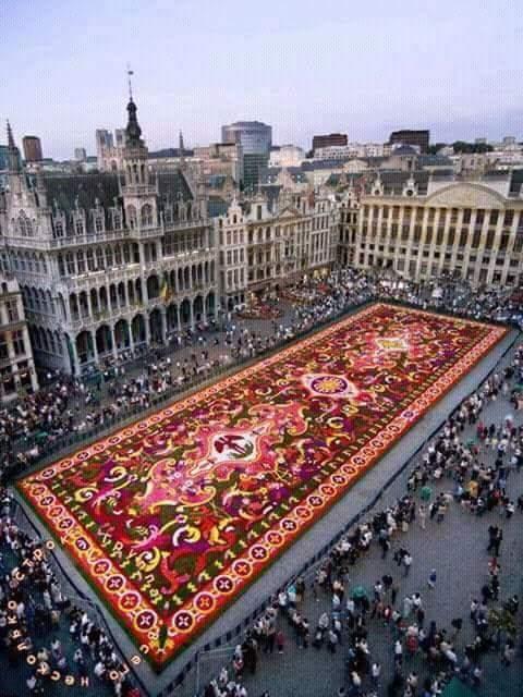 Ковер из живых цветов, Брюссель