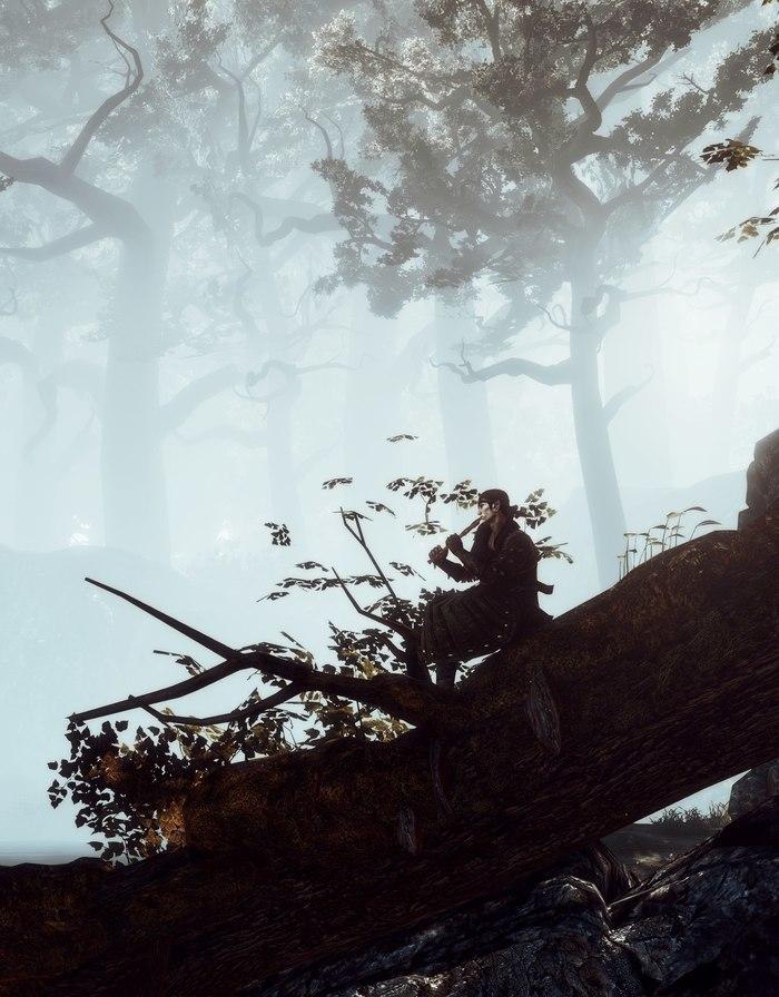 Скриншоты Witcher 2: Assassins of Kings #1 Ведьмак, Ведьмак 2, Cd Projekt, Скриншот, Длиннопост