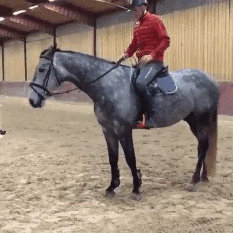 Эффектно слезаем с лошади.