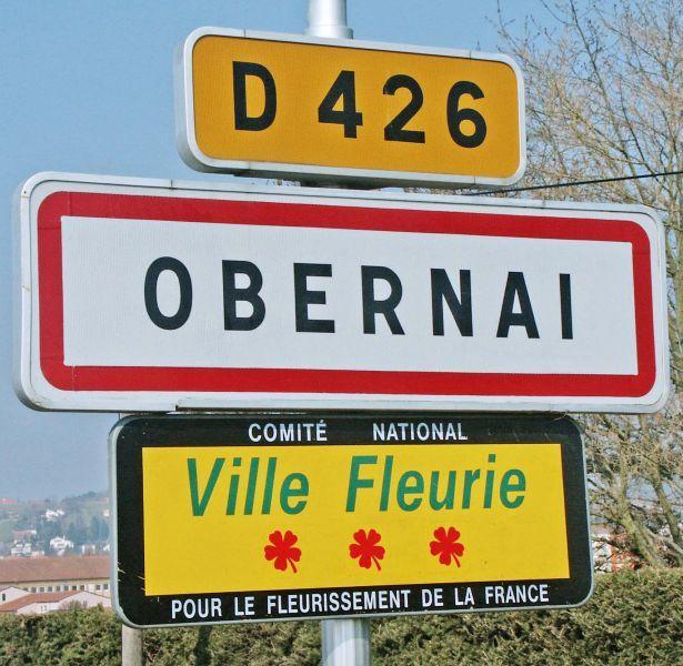 """Цветочные """"звёзды Мишлена"""" французских городов Франция, Ницца, Цветы, Город, Познавательно, Парк, Озеленение, Длиннопост"""
