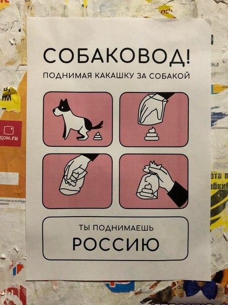 Инструкция дня!