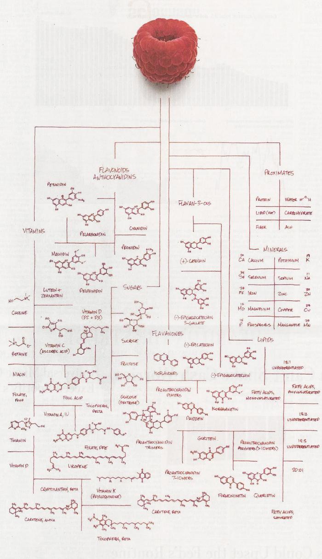 Классификация веществ, которые содержатся в малине Химия, Лига химиков, Reddit, Органика, Малина, Состав