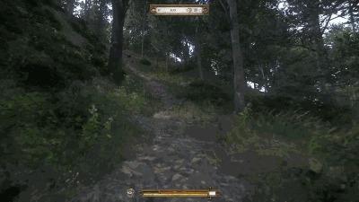 Средневековый Скример Игры, Kingdom Come: Deliverance, Скример, Баг, Юмор, Гифка