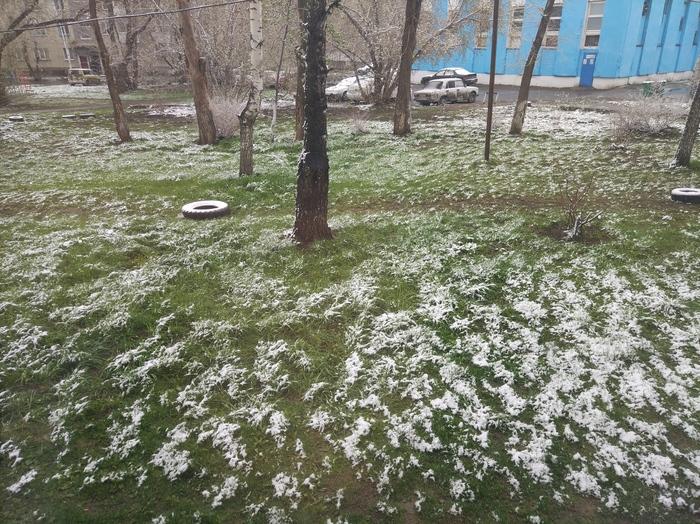 Вот такая весна Снег, Глобальное потепление, Новосибирск