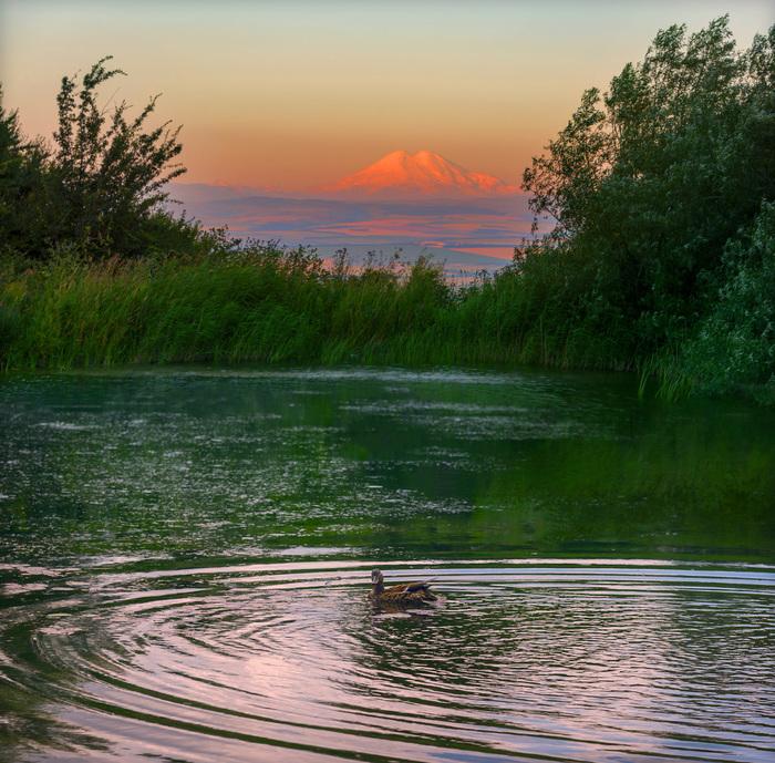 Рассвет на Монастырском озере