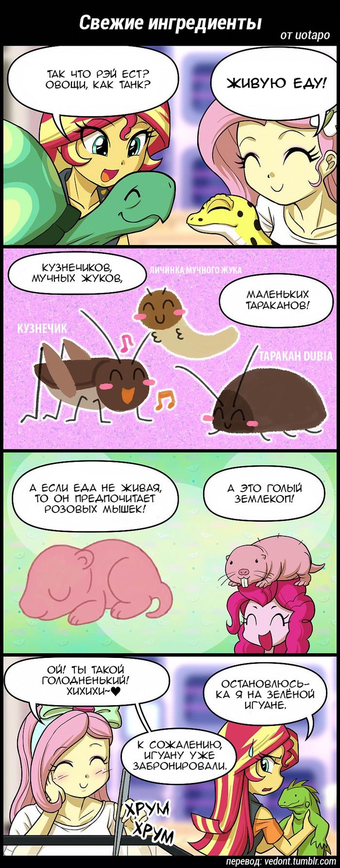[Перевод] Свежие ингредиенты Перевод, Комиксы, My little pony, Fluttershy, Sunset Shimmer, Ray, Танки, Pinkie Pie, Длиннопост