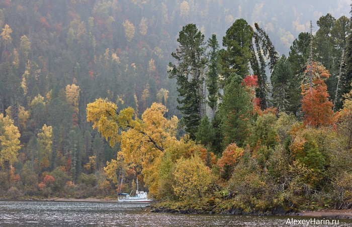 Осенний кораблик Горный Алтай, Осень, Телецкое озеро, Корабль, Осенние листья