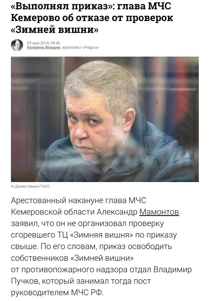 Рыба всегда гниёт с головы Мчс, Пожар в Кемерово, Пучков, Политика