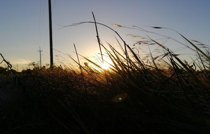 Закат над полем Фотография, Закат, Huawei, Лига фотографов