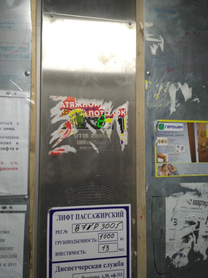 Реклама потолков от свиней Натяжные потолки, Вандализм, Длиннопост, Расклейщики