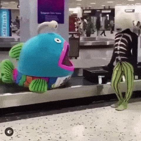 А вот и мой багаж. Я пошёл.
