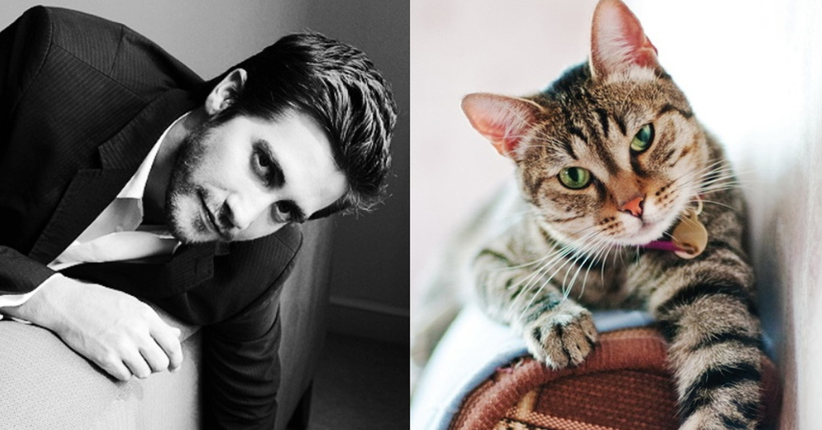 сжигание картинка про мужика и кота статье рассказывается