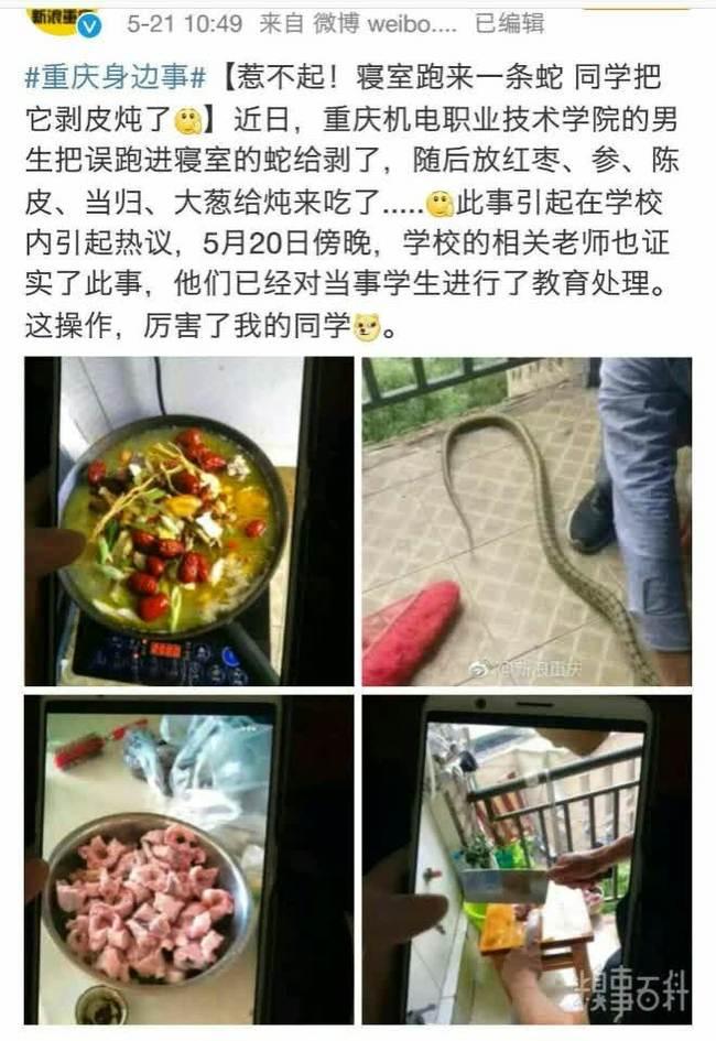Ты не ты, когда голоден Китай, Змея, Еда, Общежитие, Студенты, Китайцы, Новости, Чунцин
