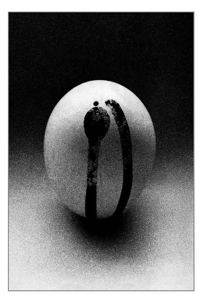 Решение яйцо, натюрморт, минимализм