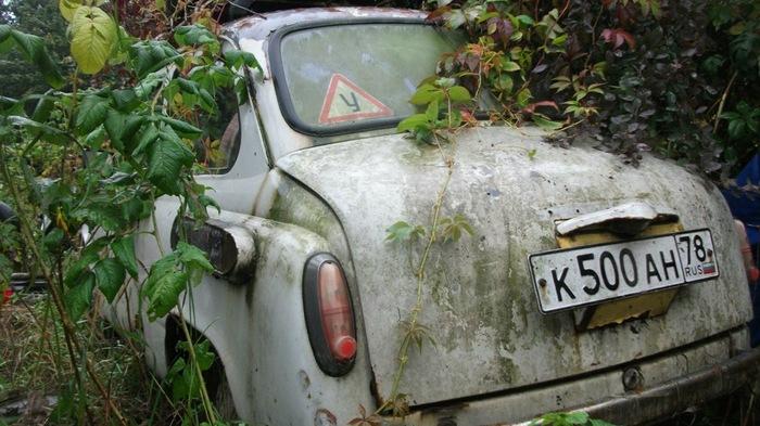 Восставший ЗАЗ-965 ЗАЗ 965, Реставрация, Длиннопост, Drive2