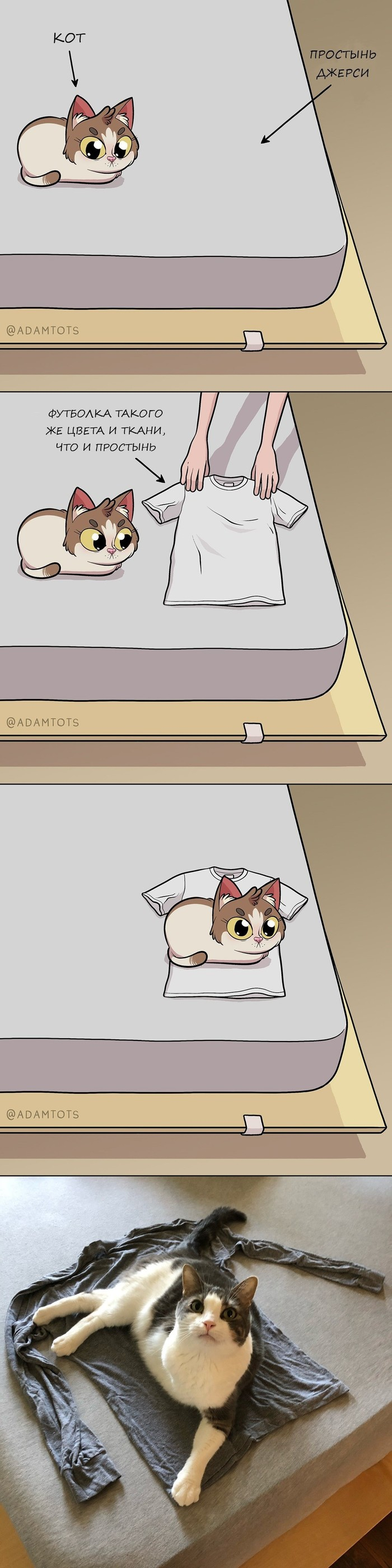 Почему? Adam Ellis, кот, логика, Комиксы, перевод, футболка, длиннопост
