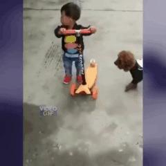 Малыш, дай прокатиться!