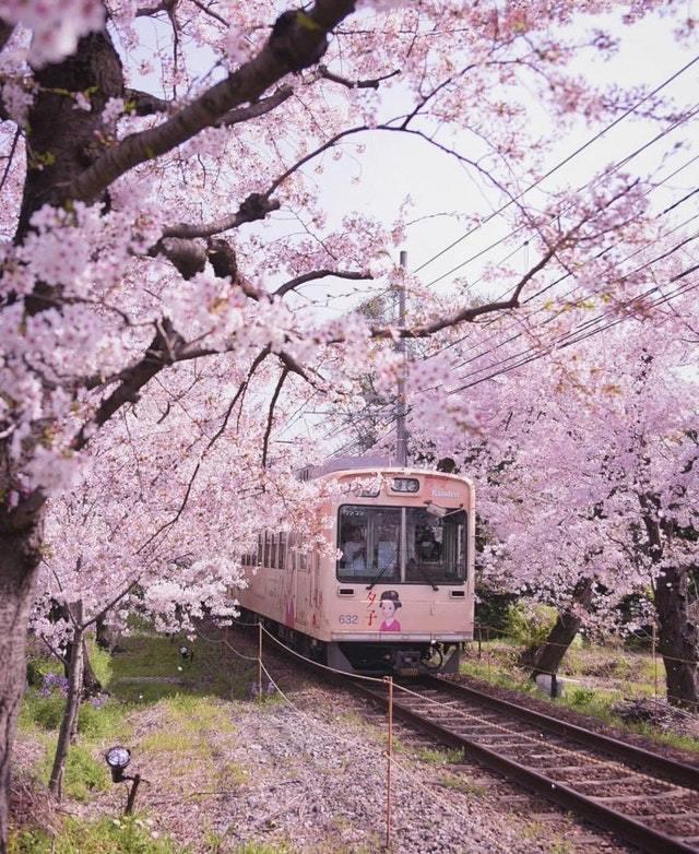 Поезд в Киото. Япония