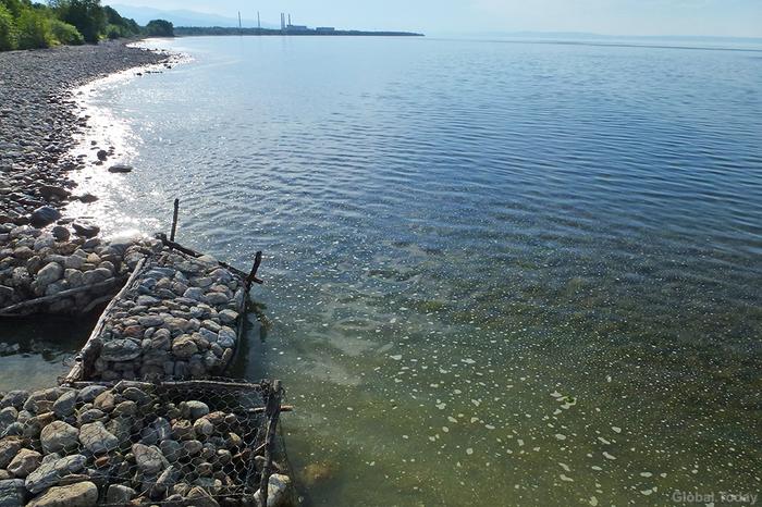 В Байкал сливают тысячи кубометров отходов Байкал, Отходы, Экология, Вода, Очистные, Байкальск, Люди, Длиннопост, Негатив