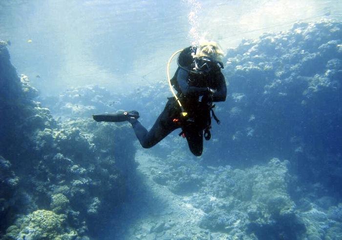Когда работа - не работа, а подлинная страсть. Дайвинг, Профессия, Подводный мир, Красное море, Египет, Длиннопост