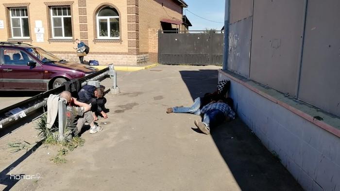 Мособласть во время проведения чемпионата Люди свиньи, Пьяный, Сон, Чемпионат мира, Московская область, Длиннопост