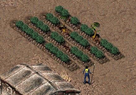 Сложная жизнь избранного Fallout, Fallout 2, Игры, Компьютерные игры, Заминусуют
