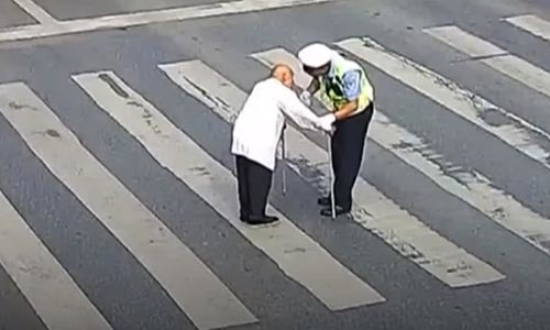 Старичок «переехал» через дорогу на спине у полицейского Старичок, Полиция, Зебра, Пешеход, Пешеходный переход, Помощь, Видео