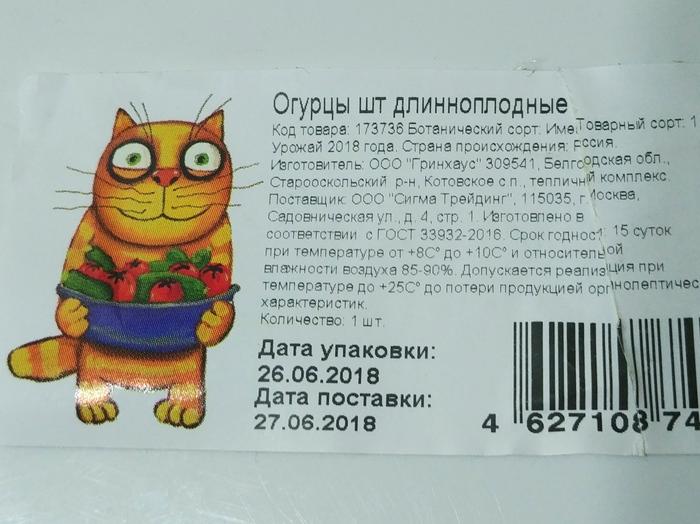 Огурец с котом. Кот, Огурцы, Огурец и кот, Вася ложкин, Маркетинг