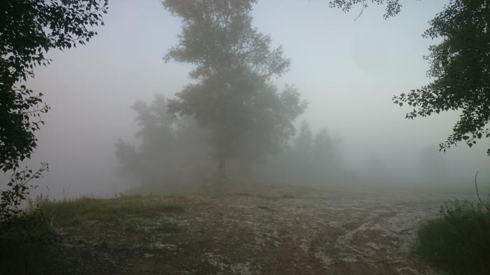 Утренняя поездка на рыбалку Рыбалка, Туман, Природа, Моё, Длиннопост