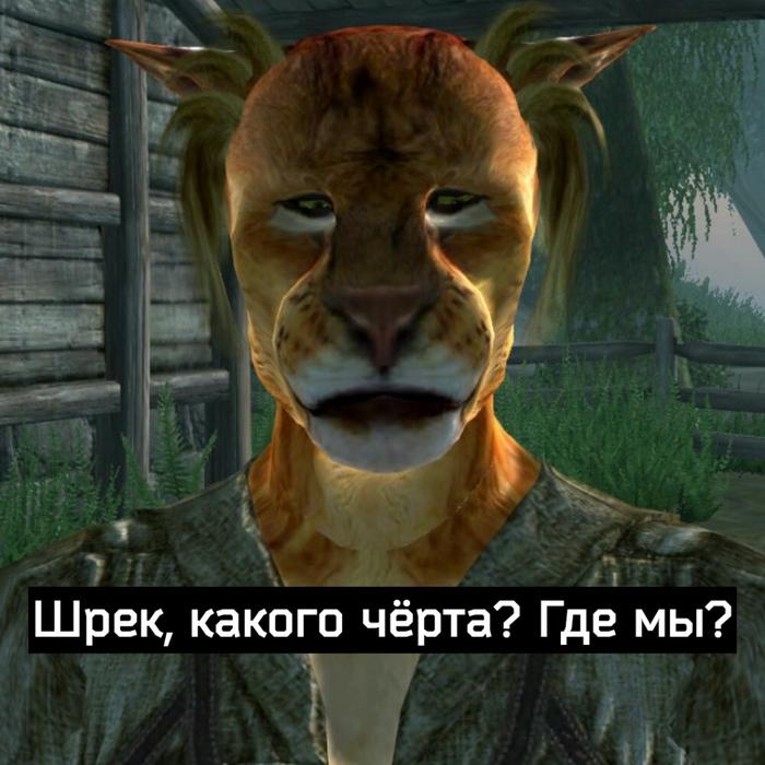 Когда попали в Сиродил Чпид, Игры, Компьютерные игры, Шрек, Oblivion, The Elder Scrolls, Длиннопост