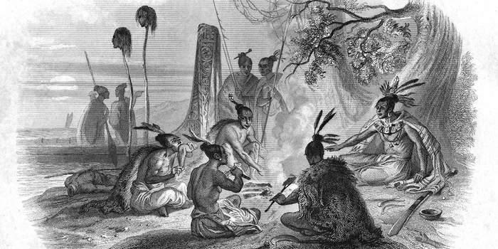 Маори против мориори. Маори, Мариори, Новая Зеландия, Война, История, Длиннопост