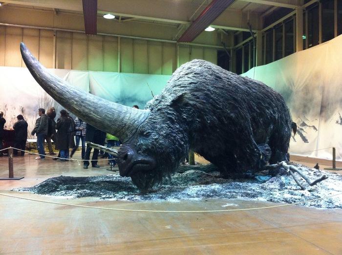 Эласмотерий, сибирский единорог Ископаемые чудовища, Древний носорог, Ископаемые