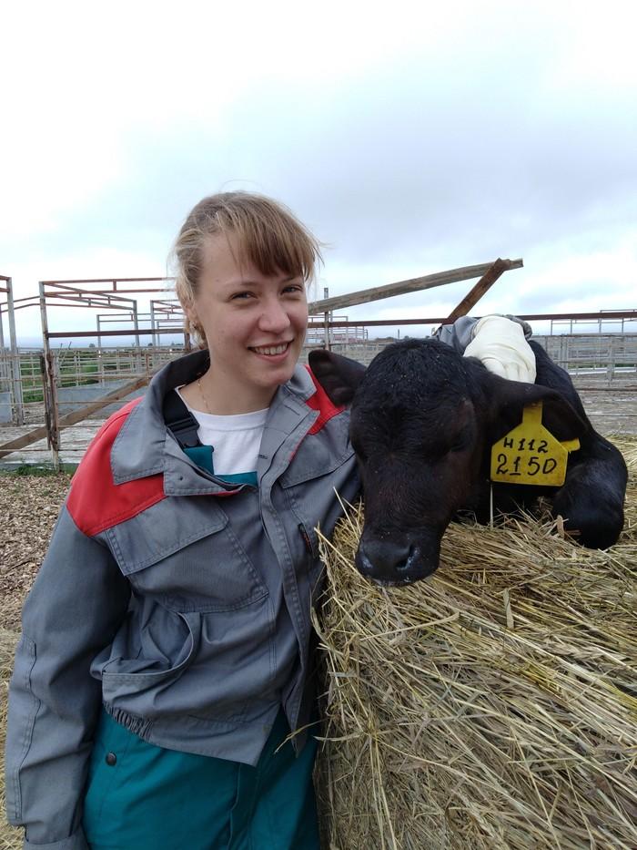 Мой новый друг Сельское хозяйство, Ветеринария, Мираторг, Животноводство, Фотография