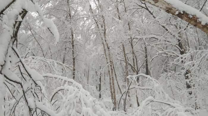 Вам жарко? Зима, Охладитесь, Фото на тапок, Длиннопост