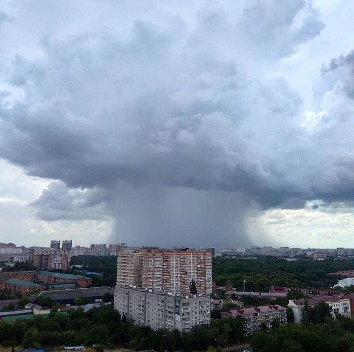Местами осадки Хреновая погода, Странная туча, Грибы, Дождь