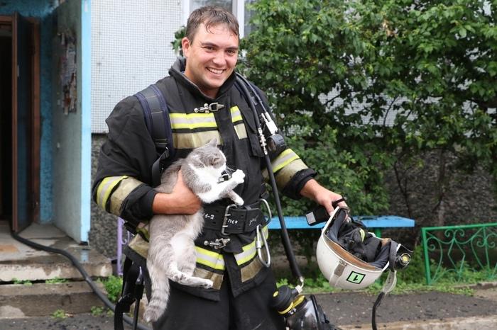 Пожарные тоже любят котиков Кот, Пожарные, Мчс, Добро, Абакан