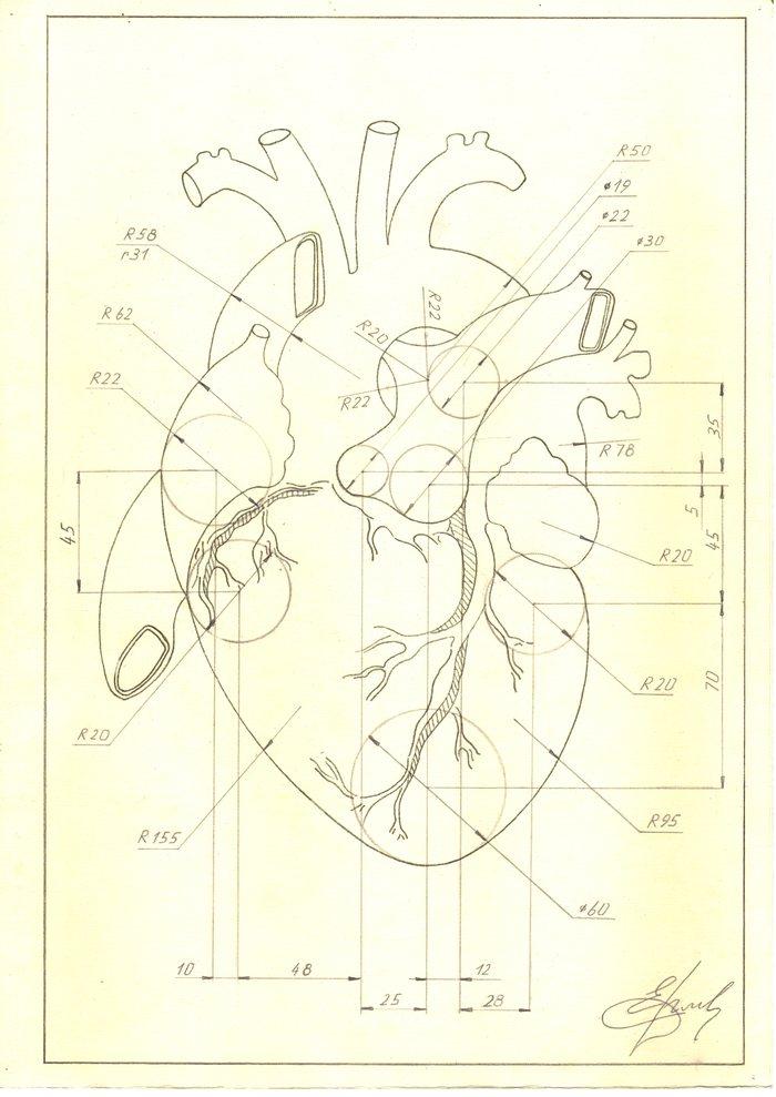 Начертил сердце Чертеж, Рисунок, Творчество, Сердце, Длиннопост