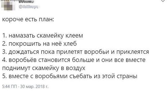 https://cs7.pikabu.ru/post_img/2018/07/20/5/1532066472138772214.jpg