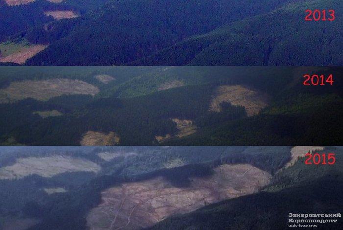 Порошенко решил неусиливать уголовную ответственность за контрабанду леса ради ЕС Украина, Политика, Карпаты, Лес, Вырубка, Петр Порошенко, Евросоюз, Видео, Длиннопост