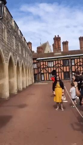 Прочь с дороги, идет королевская гвардия!