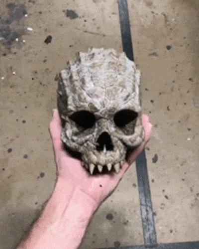 Это просто череп рептилоида.