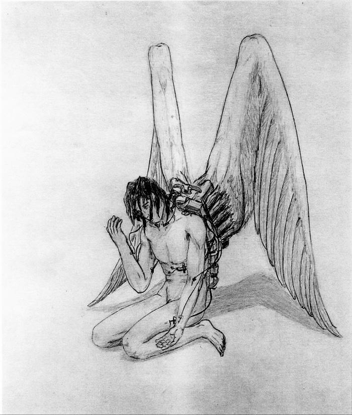 Фантом свободы Рисунок, Крылья
