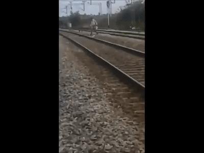 Поезд выиграл Жесть, Индия, Вертикальное видео, Гифка, Поезд
