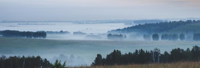 Вы видели такие туманы? Природа, Кузбасс, Туман, Деревня, Утро, Светает, Длиннопост, Лига фотографов, Фотография