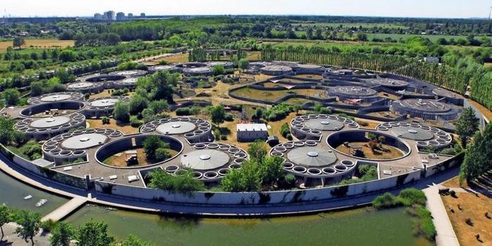 Tierheim или как забрать животное из приюта в Германии Германия, Приют для животных, Tierheim