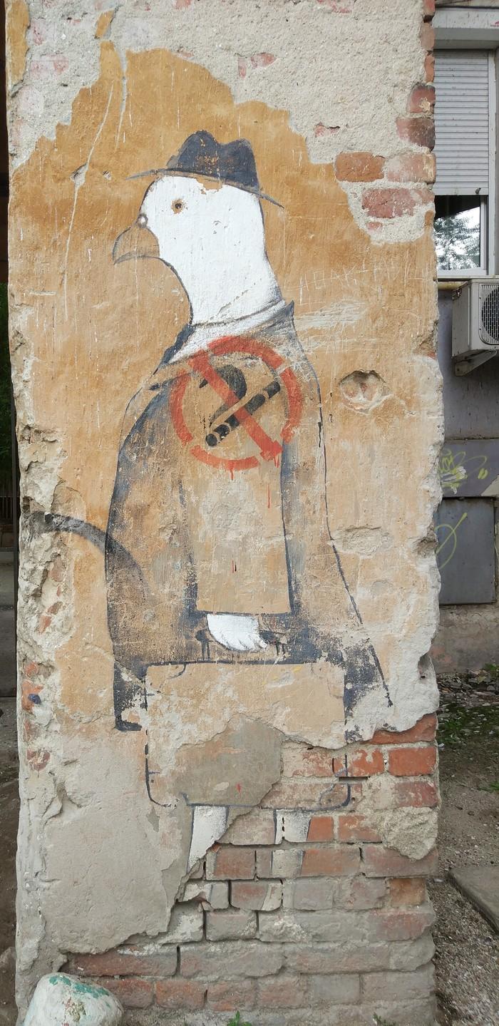 Тайные места Екатеринбурга... Истина где-то рядом, Фотография, Длиннопост