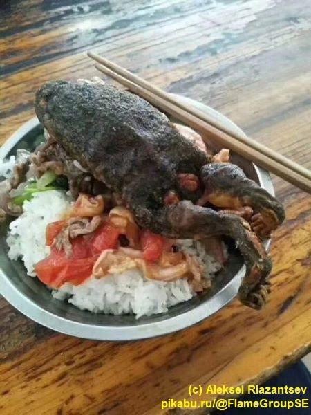 Когда упомянул китайцам, что любишь лягушачьи лапки Китай, Китайцы, Китайская кухня, Лягушки, Экзотическая еда