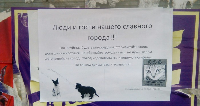 Люди и гости Объявление, Животные, Задумайтесь
